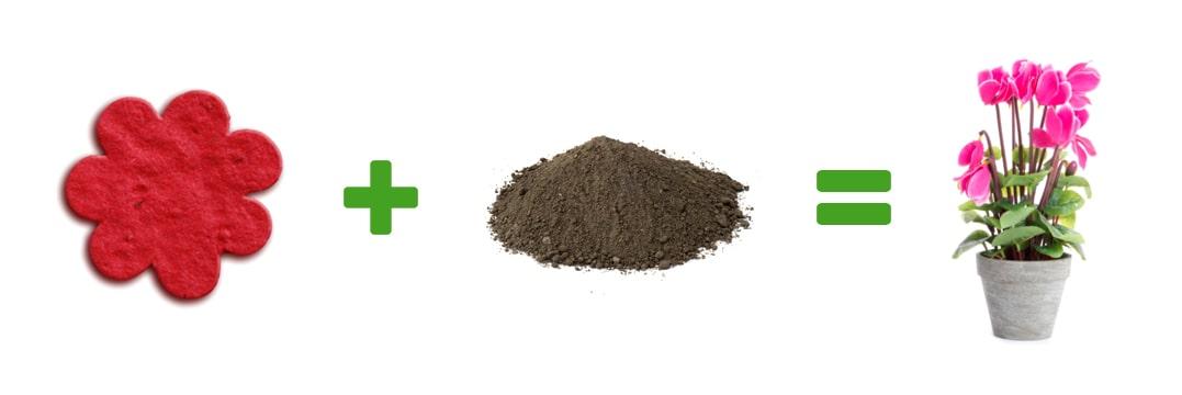 illustrazione gadget memo eco flower carta seme
