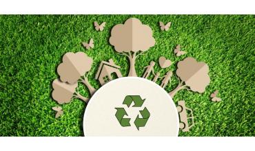Ufficio Eco-friendly: tutti i vantaggi della carta riciclata